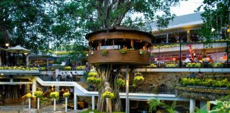 Những quán cafe rộng nhất thành phố Hồ Chí Minh